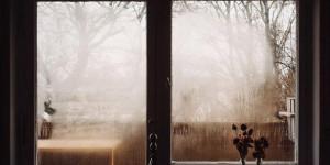 Гороскоп на 27 ноября: красота начинается изнутри