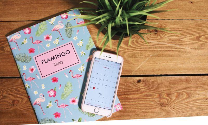 6 стильных ежедневников для правильного планирования
