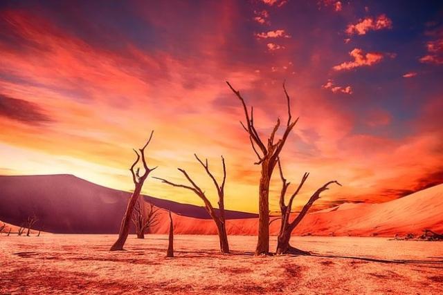 Ученые говорят, что лето станет гораздо длиннее и более жарким