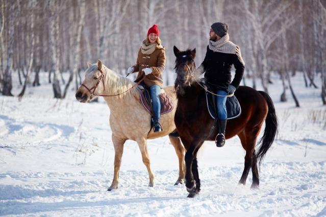 Ночь в музее или прогулка на лошадях — чем порадовать любимых женщин 8 марта