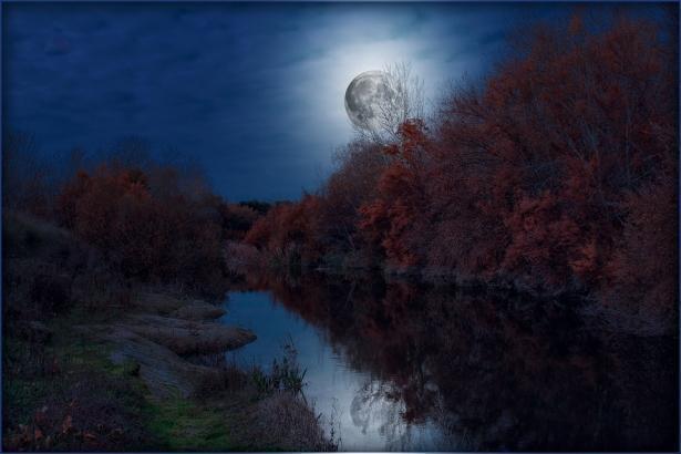 Скоро мир понаблюдает очень редкое явление: когда будет видно Голубую Луну в марте
