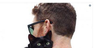 Никто не хотел брать черного кота из приюта, пока он не сделал это