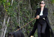 """""""Кто кого выгуливает?"""": новые фото Анджелины Джоли вызвали осуждения поклонников"""